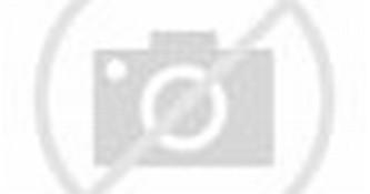 WALLPAPER ANDROID - IPHONE: Wallpaper Danbo HD