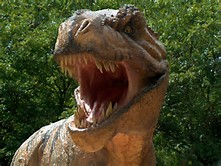 T-Rex Dinosaurs Eating