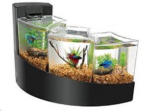 Pics Photos   Aquariums Betta Tanks Betta Bowfront Double Tank Kit