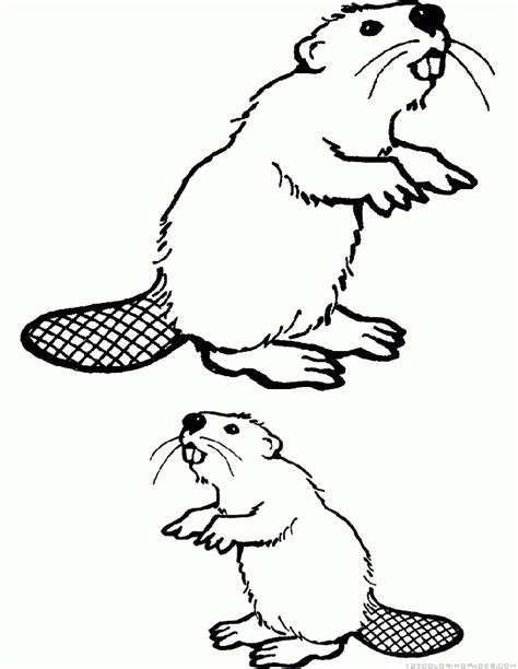 river bank coloring page 78 beaver coloring page beaver coloring page beaver