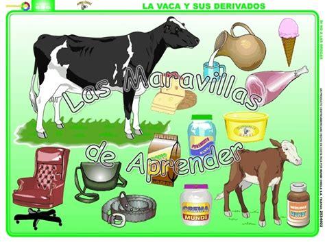 imagenes de animales y sus derivados dibujos de vacas y sus derivados imagui