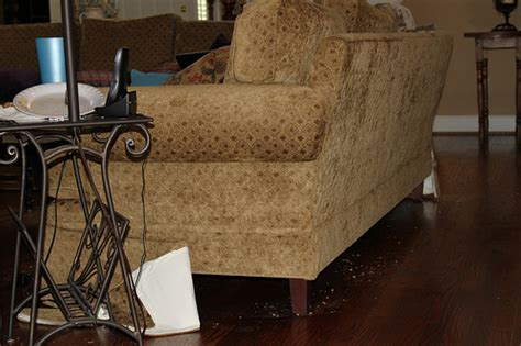 remove static from couch you wear nothing but you wear it so well how to remove a