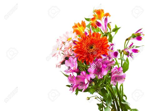 Flowers And Bouquets by Flower Bouquet Part 1 Weneedfun