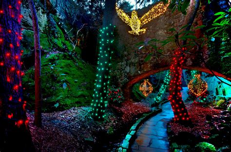 rock city enchanted garden of lights coupon rock city enchanted garden of lights audidatlevante com
