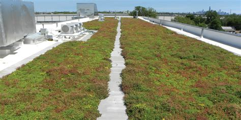 green roof green roof solutions