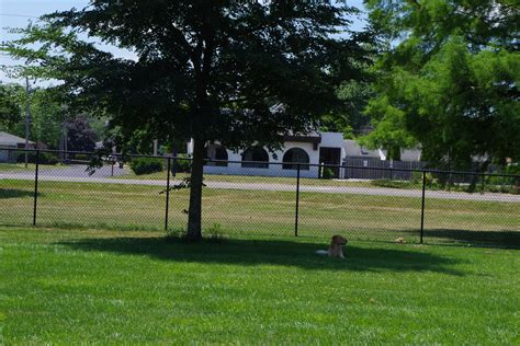 happy tails park happy tails waggin at park in pekin il agility trials