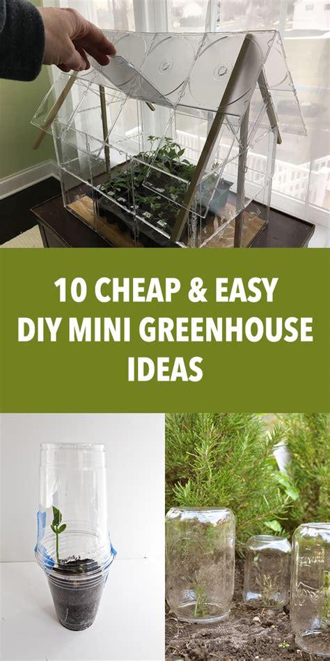 cheap easy diy mini greenhouse ideas