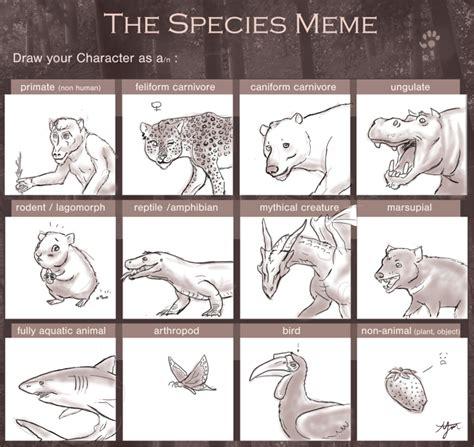 Tf Meme - species meme tf by kuzim on deviantart