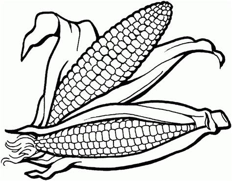 corn coloring pages indian corn coloring page coloring home