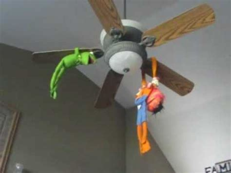 Ceiling Fan Not Spinning by The Muppets Kermit Animal Spinning On A Ceiling Fan
