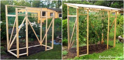 tomaten haus diy ein tomatenhaus bauen rost