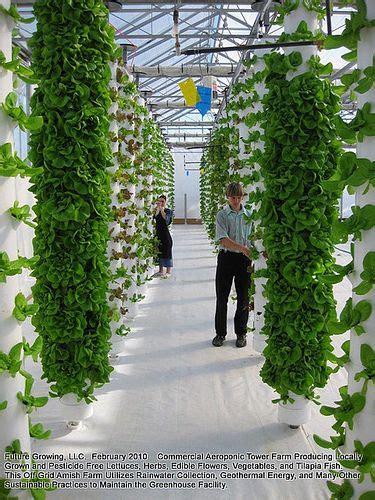 vertical towers verticle garden hydroponic gardening
