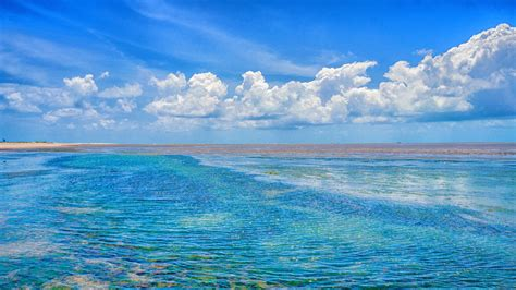 imagenes sorprendentes del oceano imagenes del oceano artico related keywords imagenes del