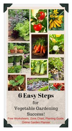 vegetable garden plans zone 6 1000 images about vegetable garden tips organic on