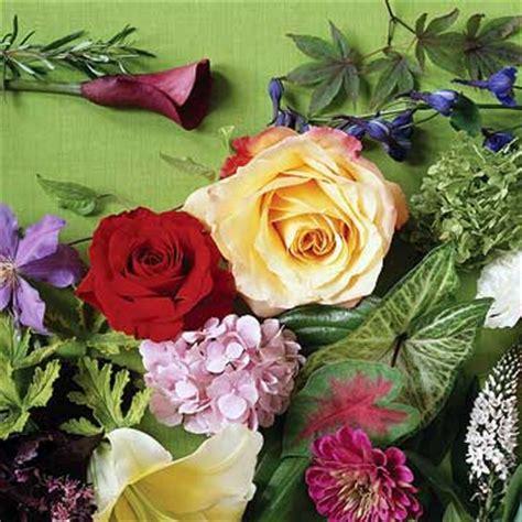 significato dei fiori amicizia cosa significano i fiori esiste un linguaggio dei fiori