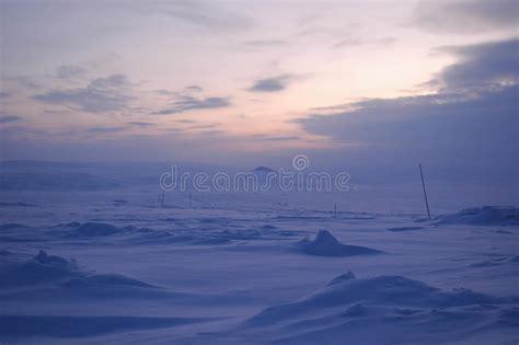 polar in winter tundra siberia stock photo image of hill 74898706