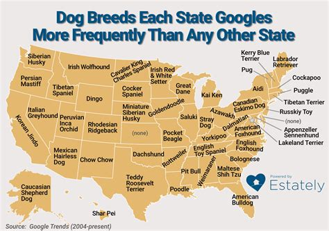 state has the most dog owners per capita according to 2016 stats state with the most dog owners state has the most dog