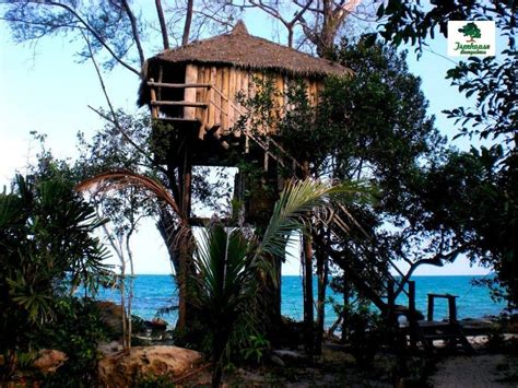 treehouse honeymoon treehouse bungalows koh rong island sihanoukville