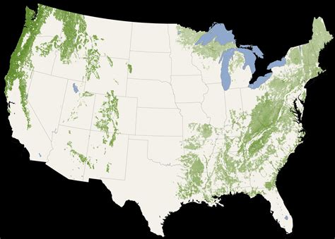 map showing states of usa nasa of its map depicts global forest heights