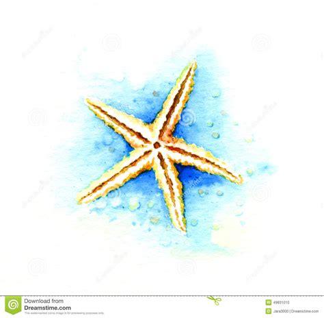 starfish stock illustration image 49831010