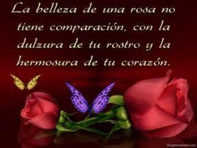 bello fondo de mariposas con una mensaje de reflexin para imagenes de rosas y mariposas frases de amor y amistad