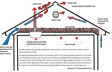 Attic Roof Vents - proper attic ventilation burke emergency restoration