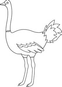 ostrich coloring page free coloring pages of emu outline