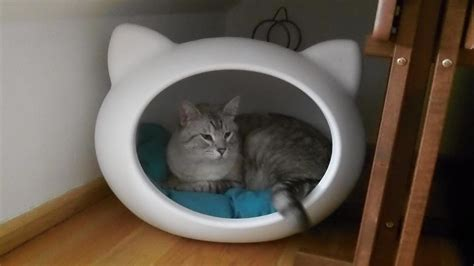 cool cat beds it s a pet s life guisapet