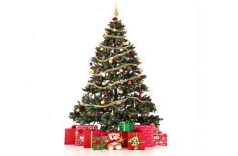 all artificial christmas trees and lights 1 2 price at