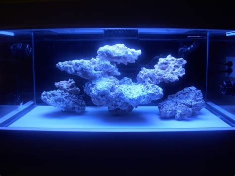 Reef Aquascaping Ideas by Minimalist Aquascaping Page 59 Reef Central