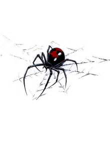 black widow spider web tattoo meaning clipartsgram com