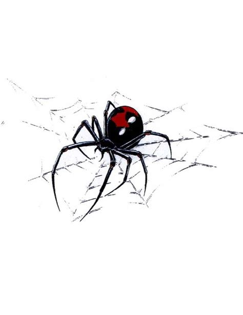 black widow spider tattoo 30 black widow designs and ideas golfian