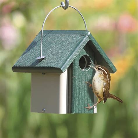wren bird house wren bird house kits birdcage design ideas