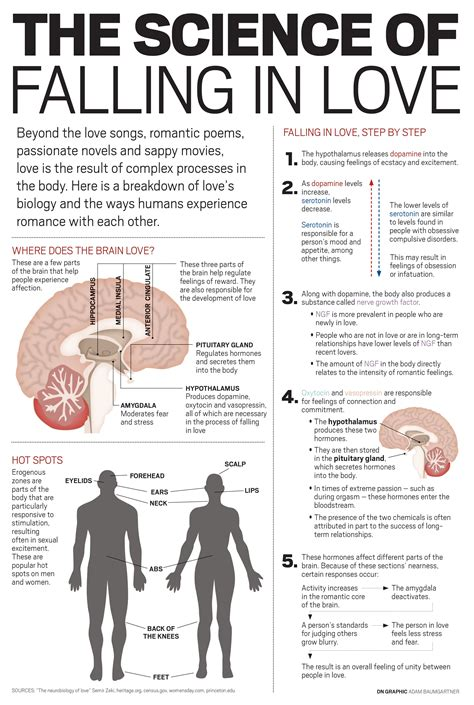 the science of mindfulness the scientifically proven method to relieve stress melt tension and gain peace of mind in 5 minutes a day books your brain on infographic meetmindful