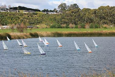 dragon boat racing tauranga the lakes tauranga latest news and events