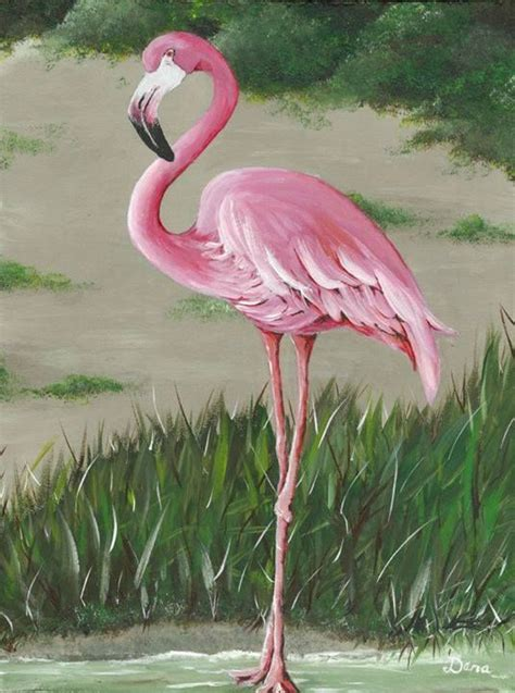 Painting By Number Dlr 453 Frame 65 X 50cm Melukis Lukisan Malang Cari 942 best images about flamingo on pink flamingos birds flamingo fabric and