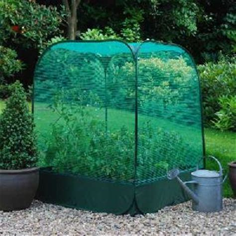 large raised bed  pop  net cover  raised bed