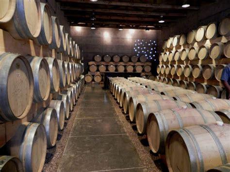 cuna de tierra aprendiendo de vinos en cuna de tierra guanajuato