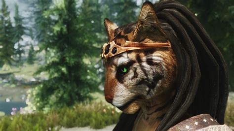 skyrim radioreggaes hair workshop for khajiit skyrim nexus mods and community