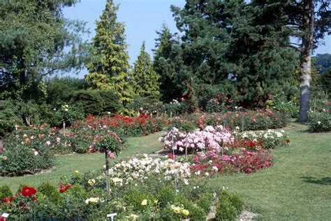 Flower Garden Photos Flower Gardens Pictures Beautiful Flowers