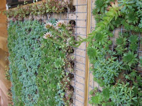 vertikale bepflanzung gardens growing up vertical planting