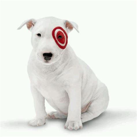 target puppy target quot quot quot dogs i seen
