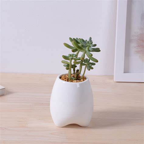 tooth shaped planter creative tooth shape tall ceramic flowerpot white pottery