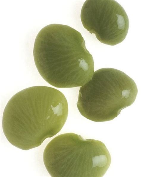 The Bean Lima Comes In Like A by 1 Lima Beans 8 Poisonous Foods We Commonly Eat Mnn