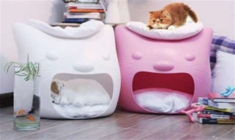 cute cat beds pics for gt cute cat beds