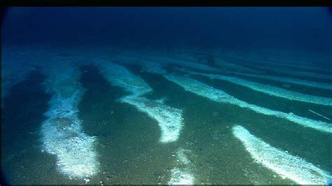 Sea Floor by Flower Garden Banks National Marine Sanctuary Secrets Of
