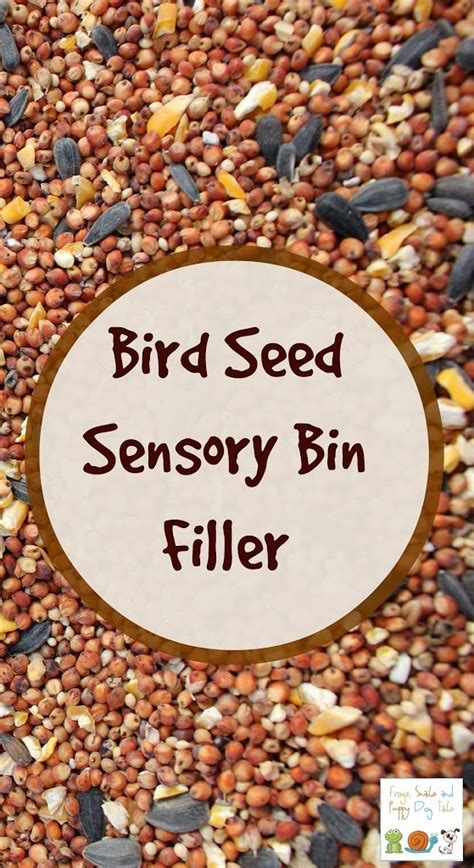 my garden bird seed sensory bin fspdt