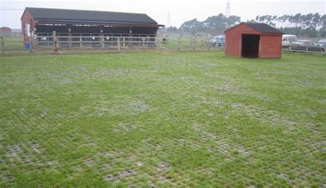 Field Mats Horses For Sale by Perfo Turf Reinforcement Mats Equine Agricultural