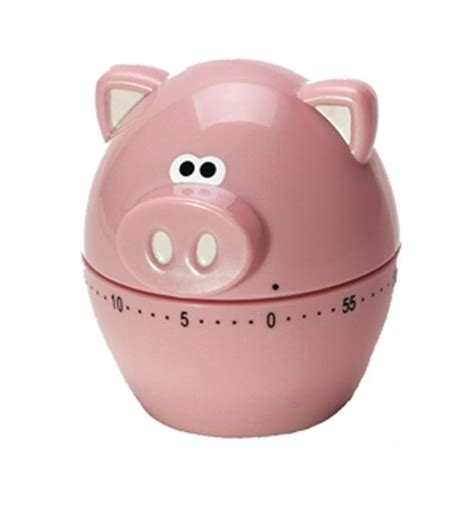 oink oink 60 minute kitchen timer in kitchen timers