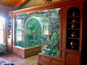 best home aquarium things of personal interest